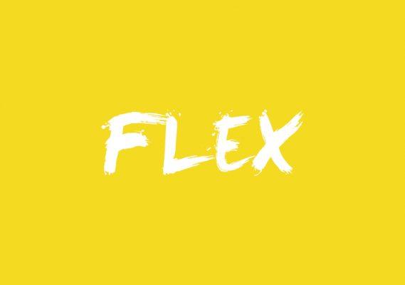 Flex Festival 1