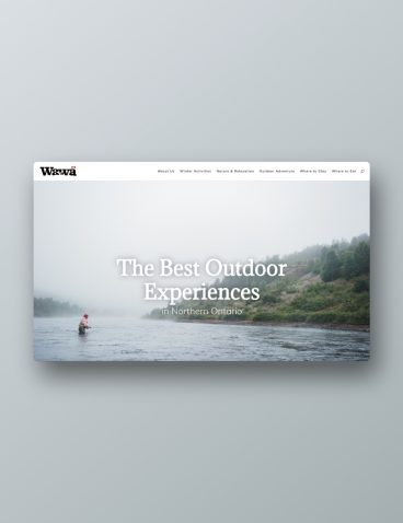 Experience Wawa Website / Billboards