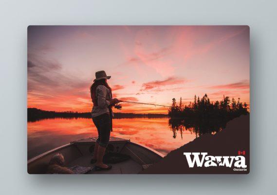 Experience Wawa Website / Billboards 3